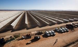 Desert complex